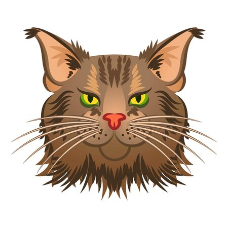 Head maine coon icon. Cartoon of head maine coon icon for web design isolated on white background
