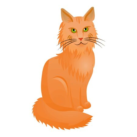 Cute maine coon icon. Cartoon of cute maine coon icon for web design isolated on white background Stock Photo
