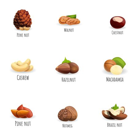 Nuts icon set. Cartoon set of 9 nuts icons for web design isolated on white background