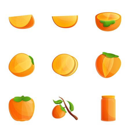 Persimmon icon set. Cartoon set of 9 persimmon icons for web design isolated on white background Banco de Imagens