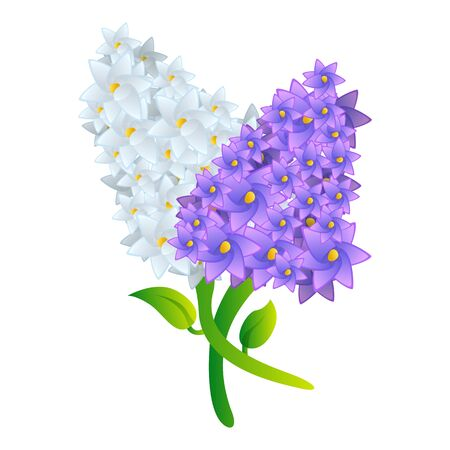 Lilac bouquet icon. Cartoon of lilac bouquet icon for web design isolated on white background
