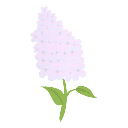 Colorful lilac icon. Cartoon of colorful lilac icon for web design isolated on white background