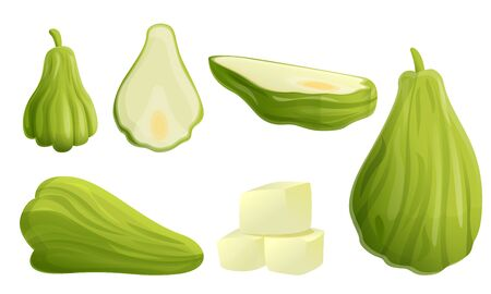 Chayote icons set. Cartoon set of chayote vector icons for web design Illustration