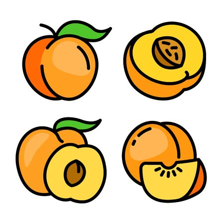 Peach icons set. Outline set of peach vector icons for web design isolated on white background