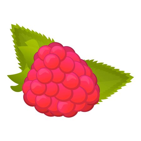 Fruit raspberry icon. Cartoon of fruit raspberry vector icon for web design isolated on white background