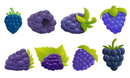 Blackberry icons set. Cartoon set of blackberry vector icons for web design