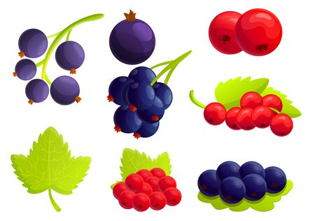 Currant berry icons set. Cartoon set of currant berry vector icons for web design 일러스트