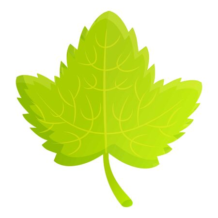 Currant berry leaf icon. Cartoon of currant berry leaf vector icon for web design isolated on white background