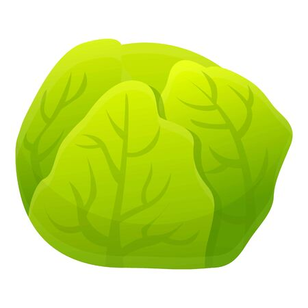 Cabbage icon. Cartoon of cabbage vector icon for web design isolated on white background Illusztráció