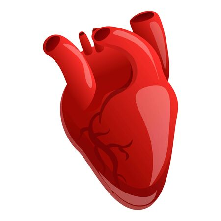 Cardiac human heart icon. Cartoon of cardiac human heart vector icon for web design isolated on white background