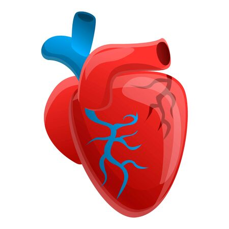 Biology human heart icon. Cartoon of biology human heart vector icon for web design isolated on white background