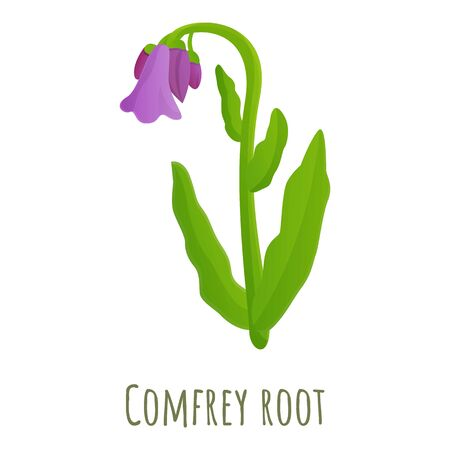Comfrey root icon. Cartoon of comfrey root vector icon for web design isolated on white background