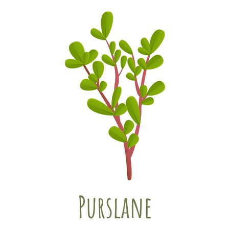 Purslane plant icon. Cartoon of purslane plant vector icon for web design isolated on white background Vector Illustratie