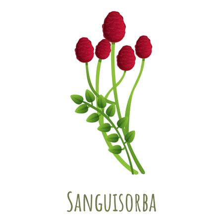 Sanguisorba plant icon. Cartoon of sanguisorba plant vector icon for web design isolated on white background Ilustrace