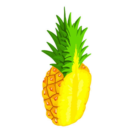 Half cutted pineapple icon. Isometric of half cutted pineapple vector icon for web design isolated on white background Vettoriali
