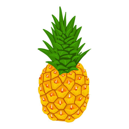 Whole pineapple icon. Isometric of whole pineapple vector icon for web design isolated on white background Vettoriali