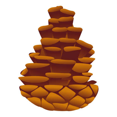 Conifer pine cone icon. Cartoon of conifer pine cone vector icon for web design isolated on white background