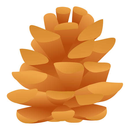 Coniferous cone icon. Cartoon of coniferous cone icon for web design isolated on white background  イラスト・ベクター素材