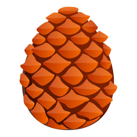 Spruce pine cone icon. Cartoon of spruce pine cone vector icon for web design isolated on white background