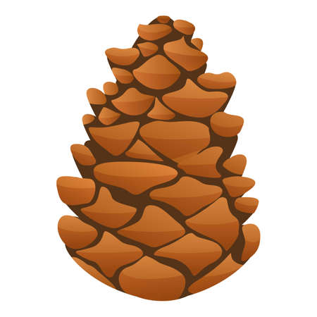 Fir tree pine cone icon. Cartoon of fir tree pine cone vector icon for web design isolated on white background