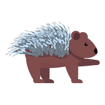 Porcupine animal icon. Cartoon of porcupine animal vector icon for web design isolated on white background