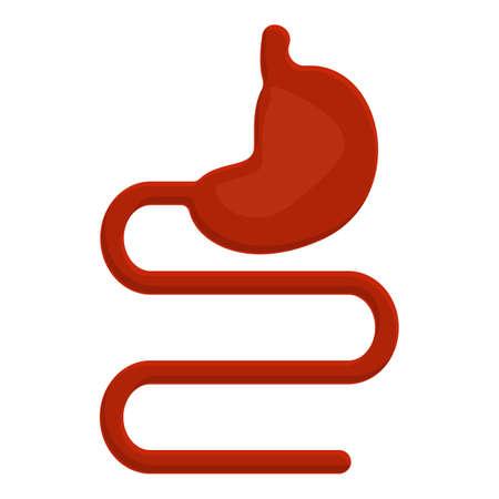 Stomach small intestine icon. Cartoon of stomach small intestine vector icon for web design isolated on white background Иллюстрация