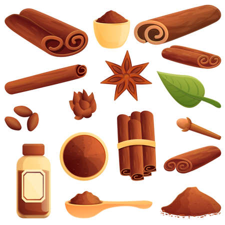 Cinnamon icons set. Cartoon set of cinnamon vector icons for web design Illustration