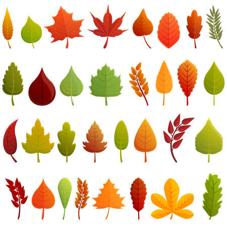 Autumn leaves icons set. Cartoon set of autumn leaves vector icons for web design