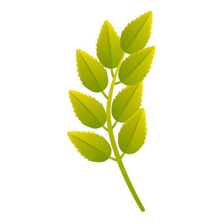 Rowan leaf icon. Cartoon of rowan leaf vector icon for web design isolated on white background