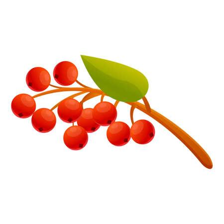 Rowan food icon. Cartoon of rowan food vector icon for web design isolated on white background