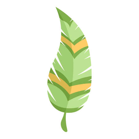 Decorative feather icon. Cartoon of decorative feather vector icon for web design isolated on white background