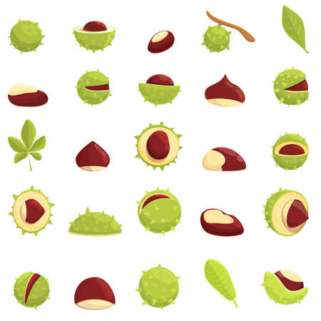 Chestnut icons set. Cartoon set of chestnut vector icons for web design