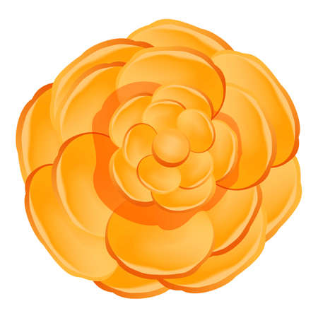 Orange camellia flower icon, cartoon style