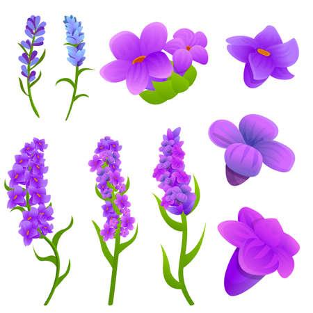 Lavender icons set, cartoon style