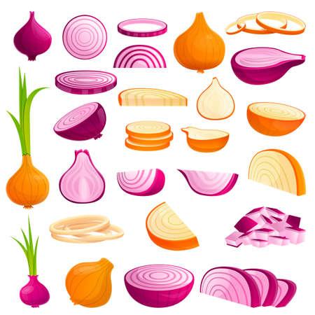 Onion icons set, cartoon style