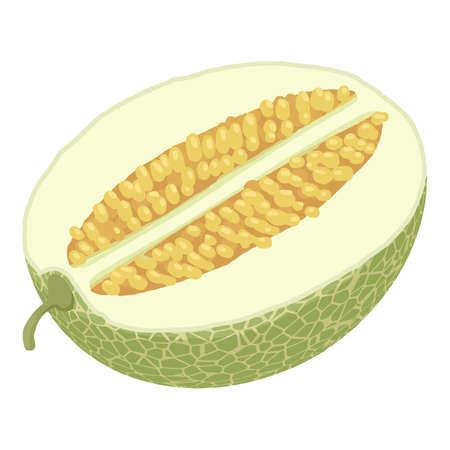 Half melon icon, isometric style Stock fotó