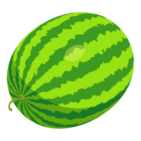Whole watermelon icon, isometric style Stock fotó