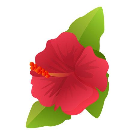 Plant hibiscus icon, cartoon style