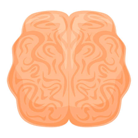 Human brain anatomy icon, cartoon style