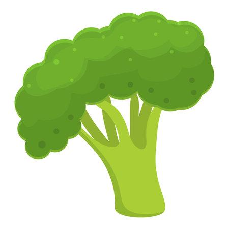 Healthy broccoli icon, cartoon style
