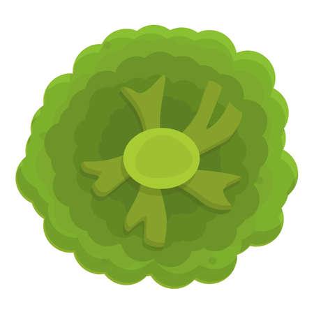 Grocery broccoli icon, cartoon style