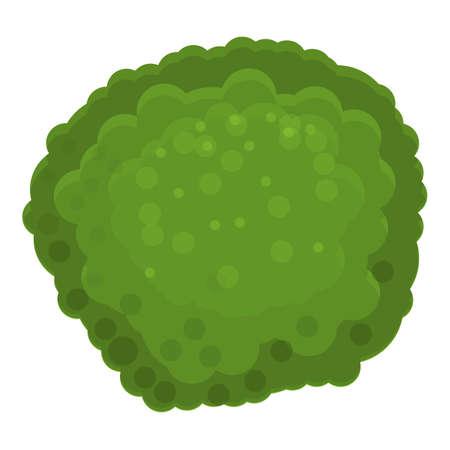 Green broccoli icon, cartoon style