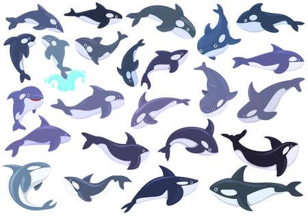 Killer whale icons set. Cartoon set of killer whale vector icons for web design
