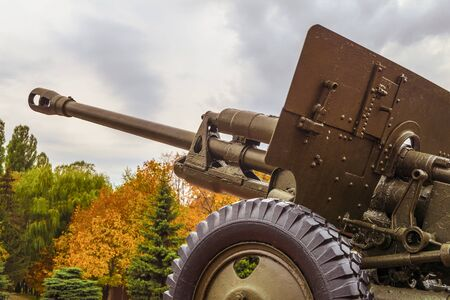 outumn: Vintage artillery barrel cannon. Military heavy artillery. Photo with limited depth of field.