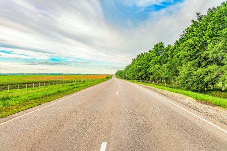 Asphalt road in countryside. Road stretches in to horizon. Belgorod region, Russia.