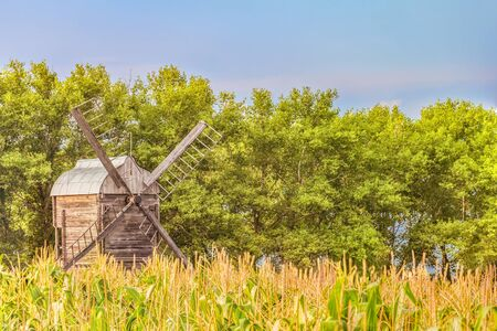 Wooden windmill in a corn field on a background of green trees. Summer rural landscape with limited depth of field. Stock Photo