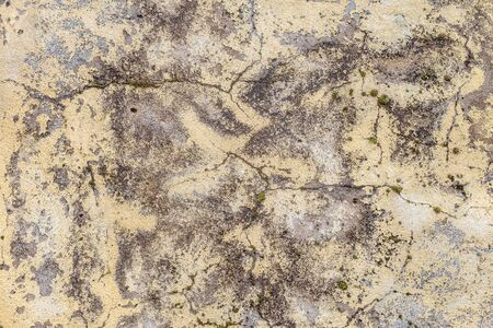 Aged mossy cracked plastered wall texture