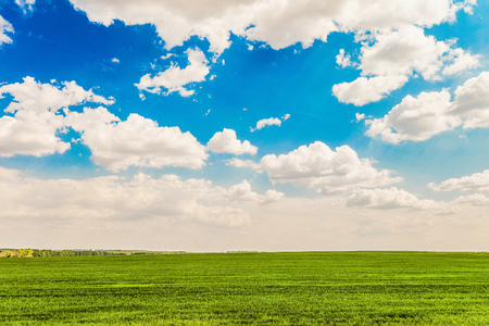 Daytime summer landscape with a green meadow under a blue cloudy sky. Natural background with bright white clouds. Belgorod region, Russia.