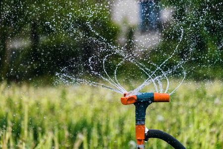 Gardening irrigation system watering green plants. Rotation sprinkler and splash water drops. Agricultural background with limited depth of field. 写真素材