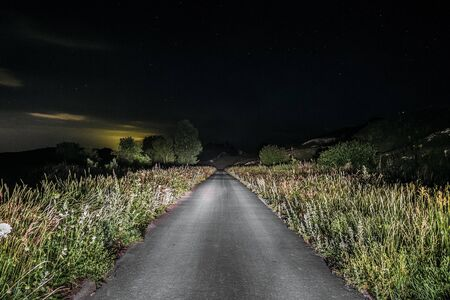 Single track asphalt road in the headlights of a car at night. Belgorod region, Russia. Night scape.